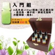 入門精油組-10ml純精油x6瓶+六孔精油木盒